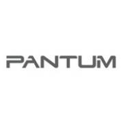 Купить чипы для PANTUM